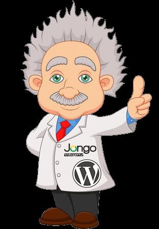Bild des WordPress Professor