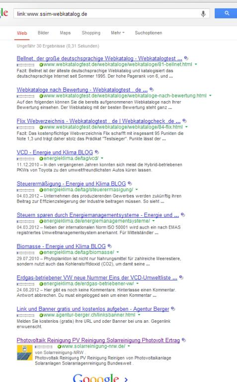 Screenshot BrandRank in deutschen SERPs
