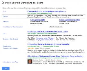 Screenshot Elemente zur Darstellung der Sucheergebnisse in Google